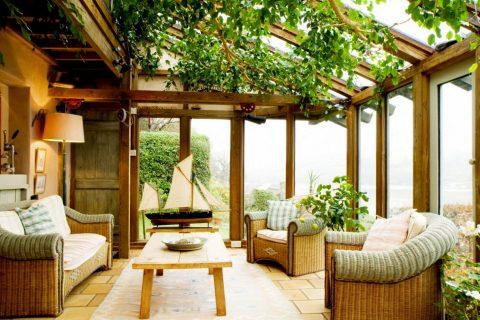 Cura piante da interno